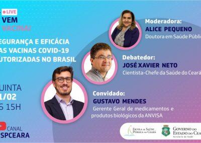 Webconferência Segurança e Eficácia das Vacinas contra Covid-19 autorizadas no Brasil